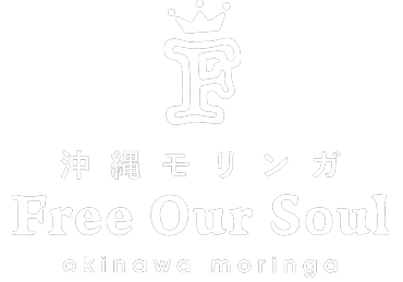 Free Our Soul